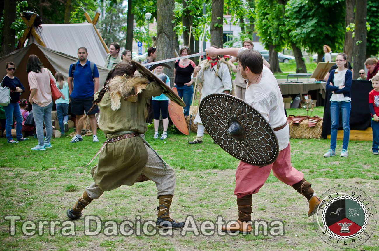 Transylvania History Day 2014